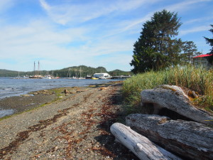 Port Hardy B.C, Vancouver Island
