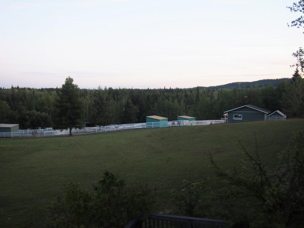 Prince George B.C, Horse Farm