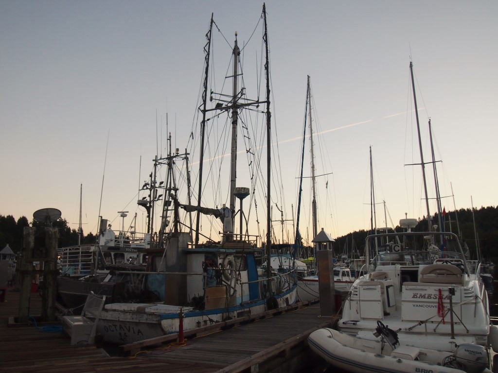 The sun setting over the sail boats in the Gibsons Marina B.C