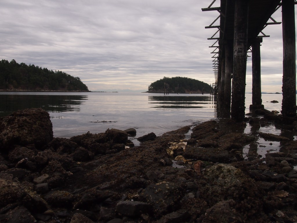 Pier on the beach on Mayne Island BC