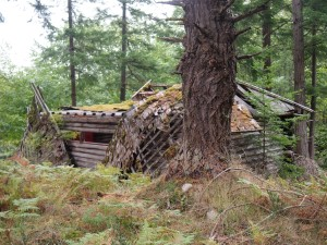 Ruins of a cabin on Mayne Island BC