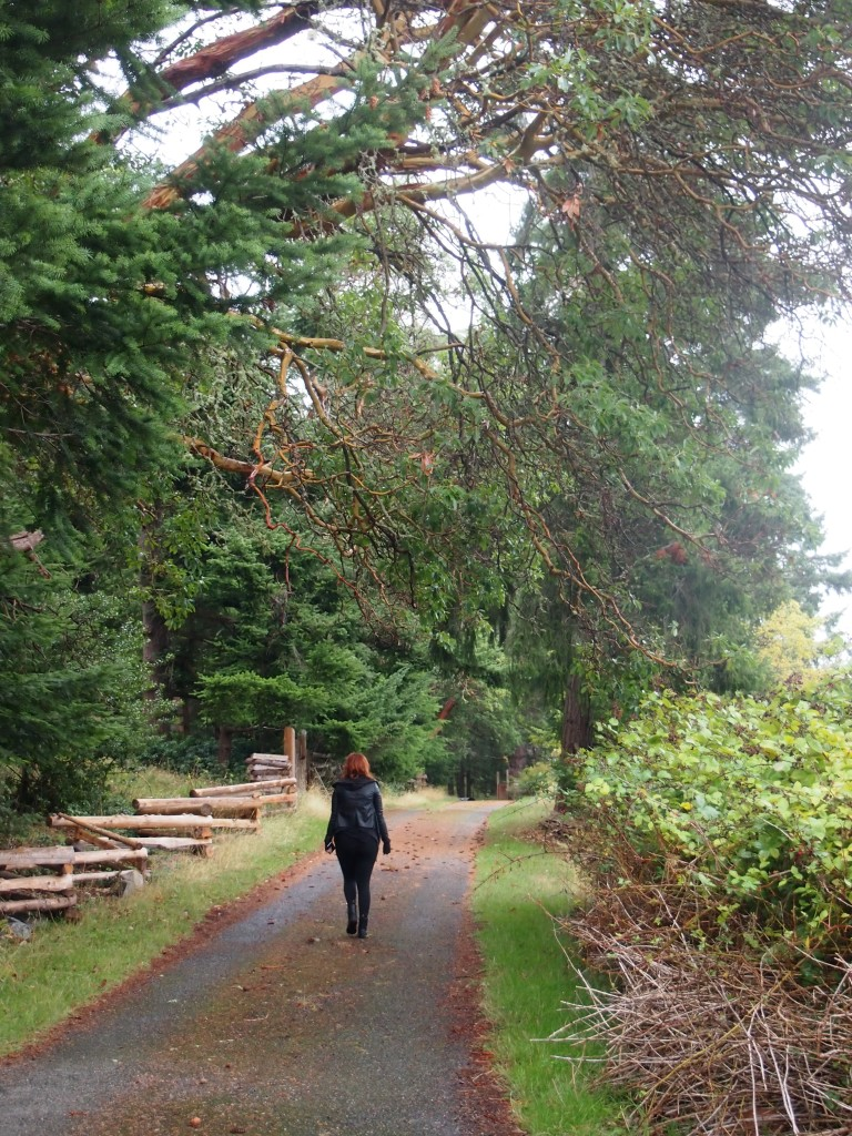 Rainy day wandering on Mayne Island BC