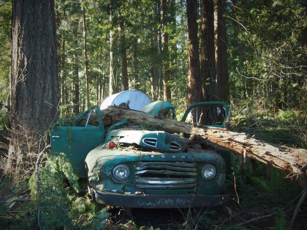 Old truck ruins after a wind storm