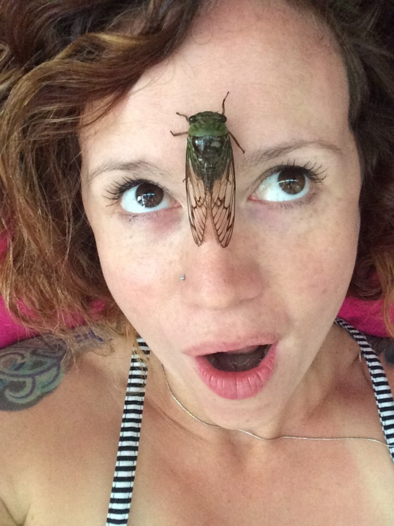 Playing with a cicada in Guadeloupe