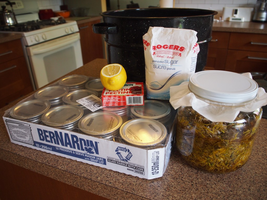 Canning supplies to make dandelion jelly