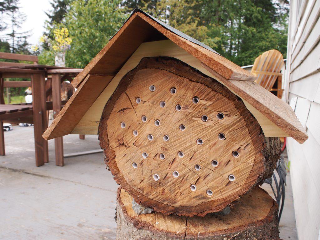 Homemade mason bee log house