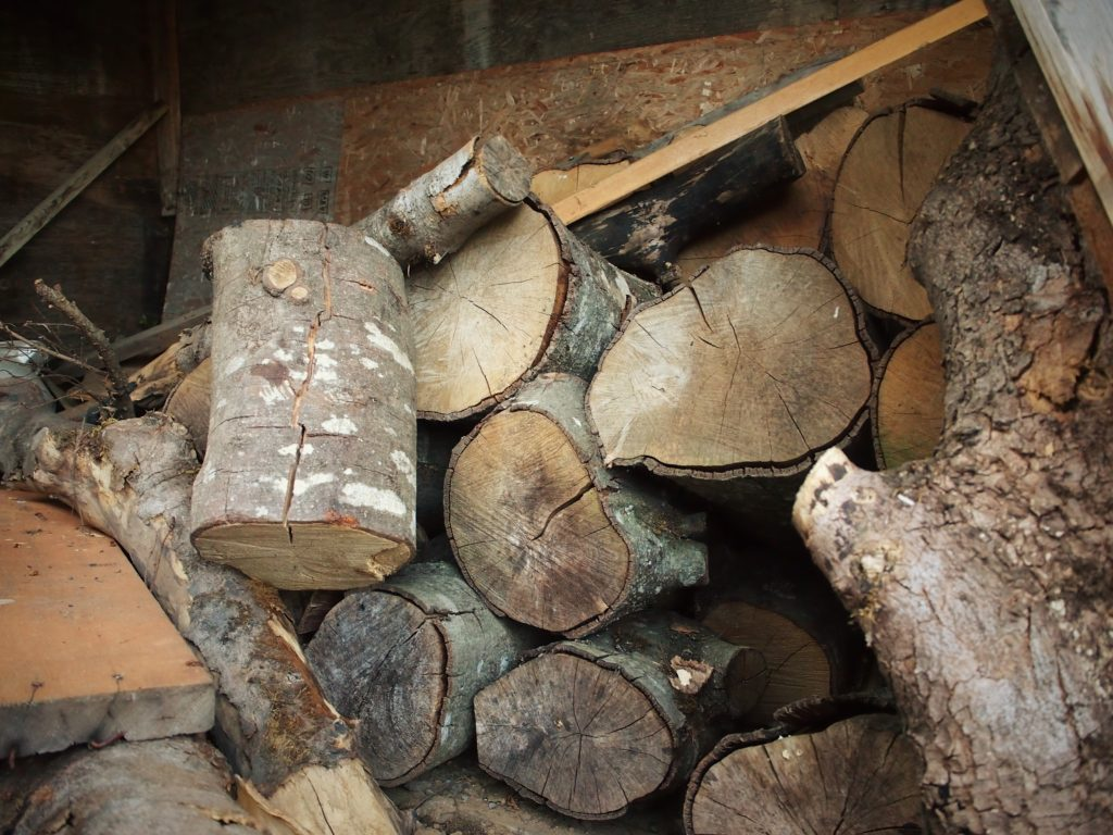 Pile of logs to choose one for the mason bee house