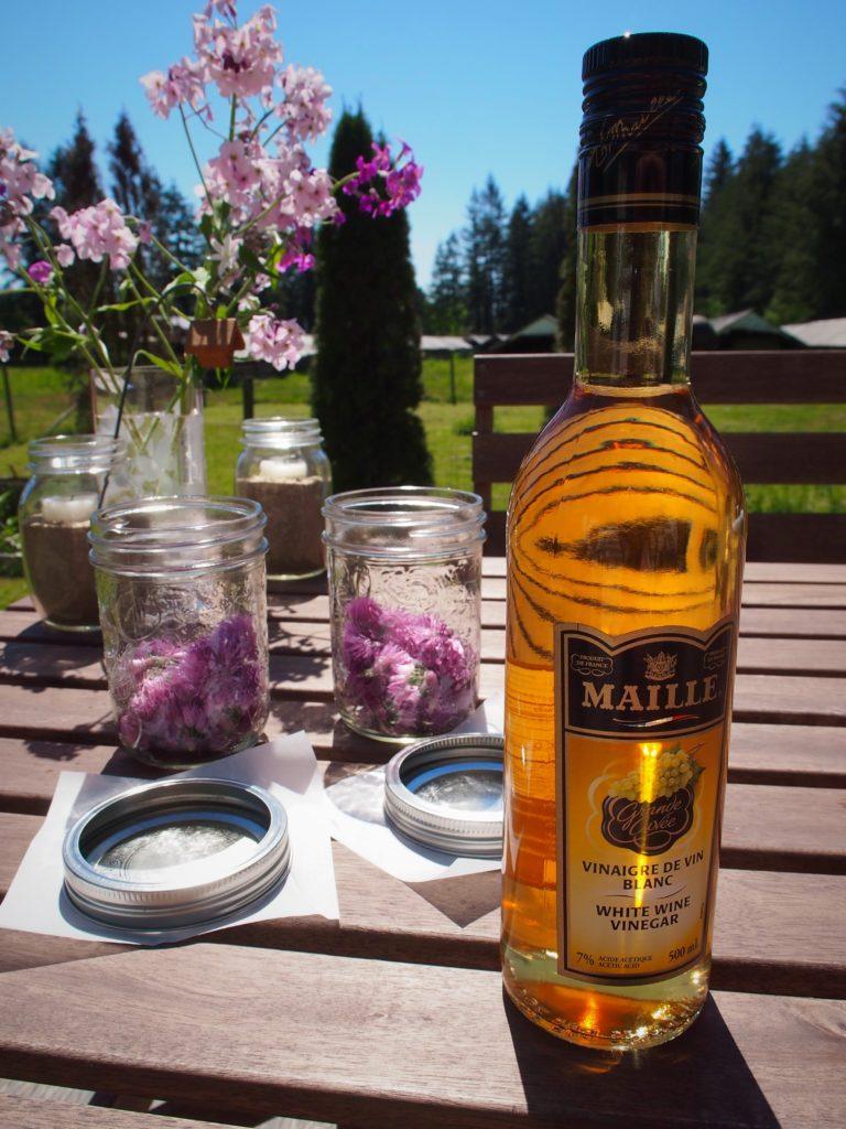 White wine vinegar for chive blossom vinegar in mason jars