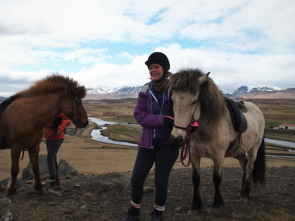 Riding horses in Skagafjordur Iceland
